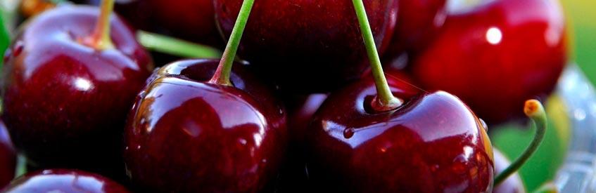 армянские фрукты - вишня