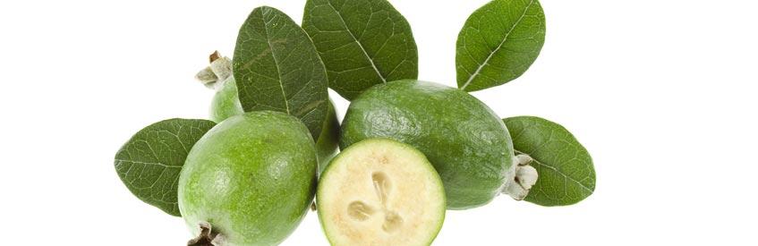 армянские фрукты - Фейхоа